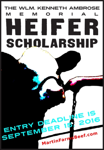 Kenneth Ambrose Heifer Scholarship Ad small (2).jpg